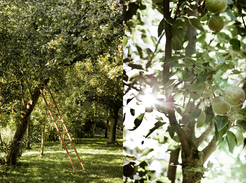 Farmers orchard by Gabrielle Vermeij
