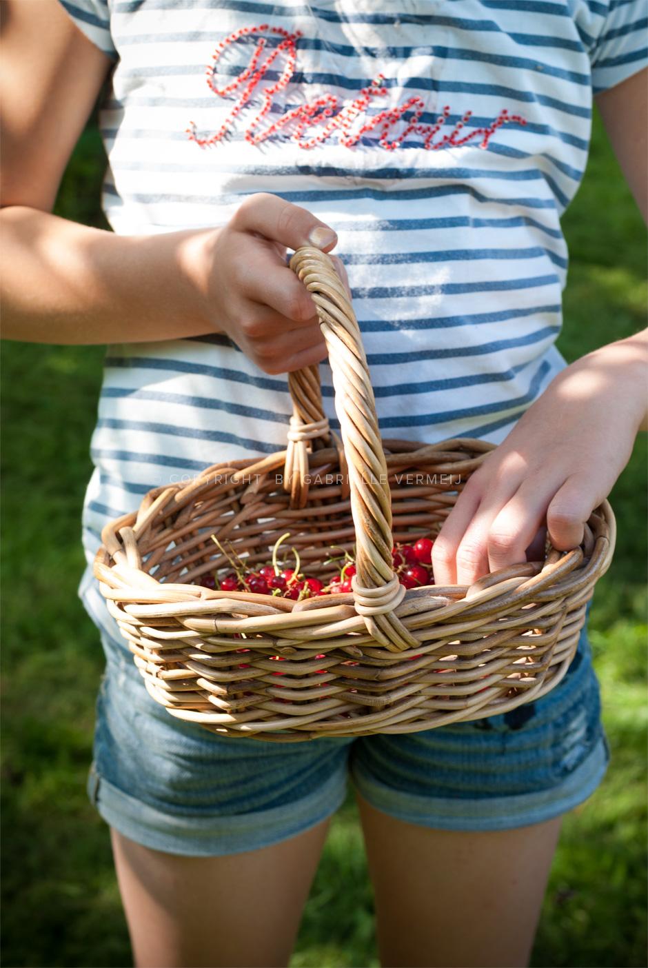 Gabrielle Vermeij_picking fresh red currants